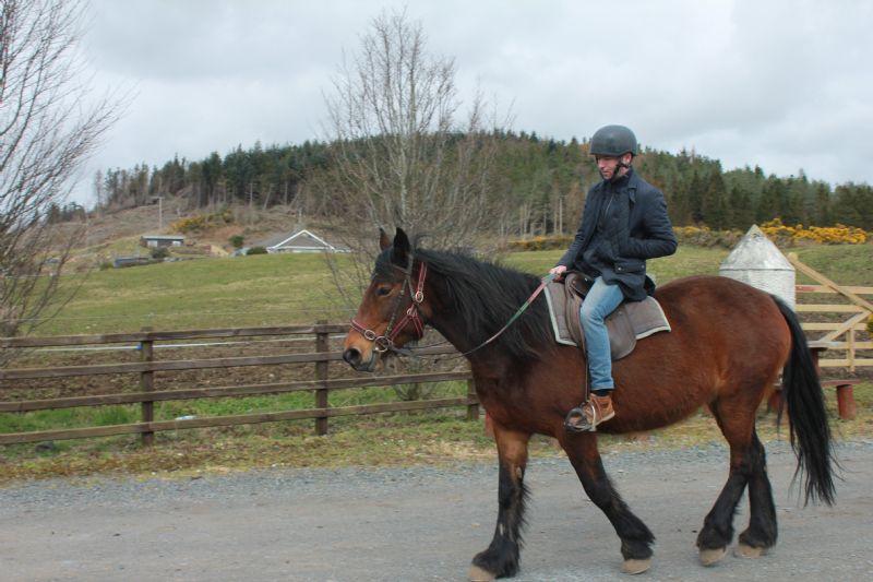 horse_riding_(24).JPG