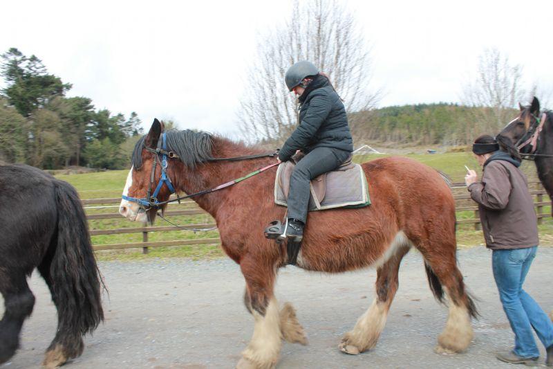 horse_riding_(28)(1).JPG
