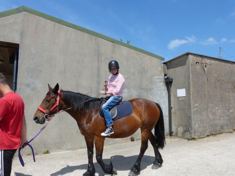 Mount pleasant horse Riding